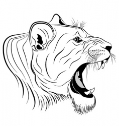 lioness tattoo vector image vector image