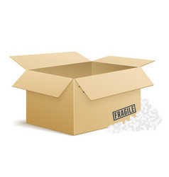 open cardboard box with foam peanuts vector image vector image