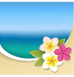 Plumeria flowers on a seaside view background vector image