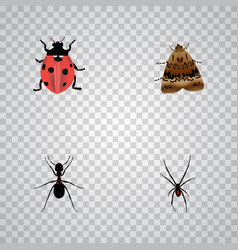 Realistic ladybird ant butterfly and other vector