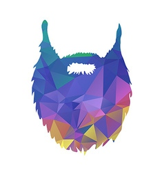 Abstract triangles low poly beard isolated on vector
