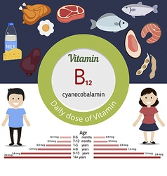 Vitamin b12 or cobalamin infographic vector