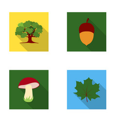 oak acorn edible mushroom maple leafforest set vector image