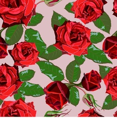 Seamless background from red roses and leaves vector image