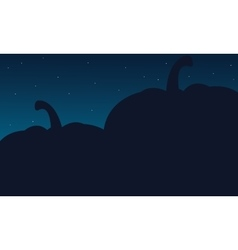 Silhouette of big pumpkins Halloween backgrounds vector image vector image