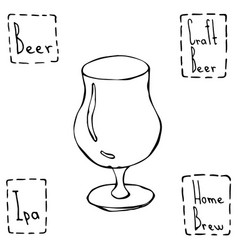 Tulip beer glass hand drawn vector