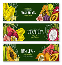 Exotic fruits banners set for juice bar vector