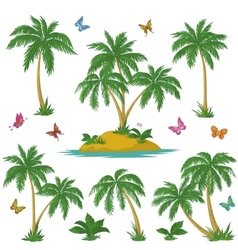 Tropical island palms and butterflies vector