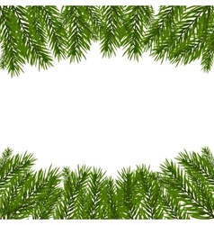 Green realistic fir branches fir branches with vector