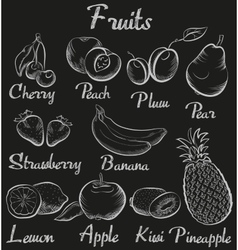 Vintage fruits hand-drawn chalk blackboard sketch vector