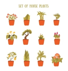 Plant in a pot set decorative element for vector