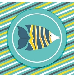 Fish icons design vector