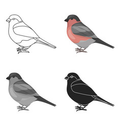 bullfinch icon in cartoon style isolated on white vector image