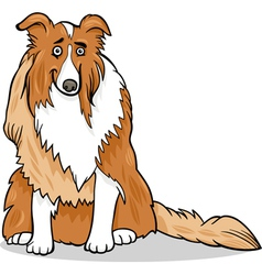 Collie purebred dog cartoon vector