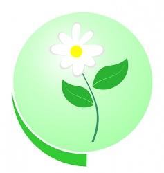 eco green button vector image vector image