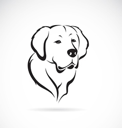Image of golden retriever vector