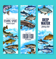 Fresh fish banner for seafood and fishing design vector