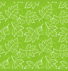 hawthorn leaves seamless vector image vector image