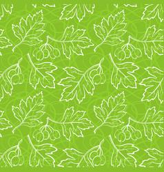 Hawthorn leaves seamless vector