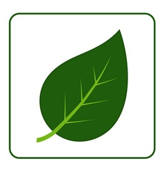 leaf green icon vector image vector image