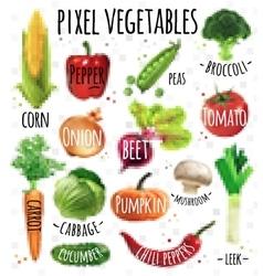 Pixel vegetables vector image