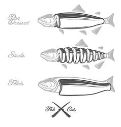Salmon cuts diagram vector image vector image