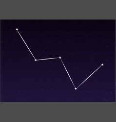 cassiopeia constellation vector image