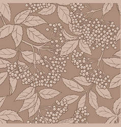 Elderberry seamless pattern vector