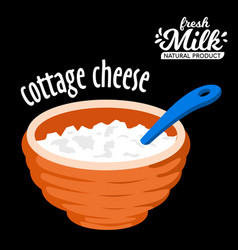 Homemade cottage cheese in a bowl icon vector