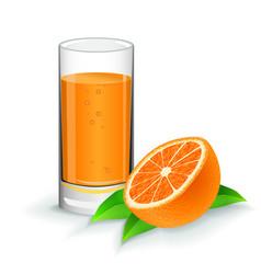 orange fresh juice with orange on white vector image