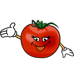 Happy tomato vector image