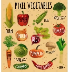 Pixel vegetables kraft vector