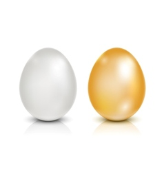 Brown and white eggs vector
