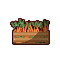 colorful silhouette of wooden box with carrots and vector image