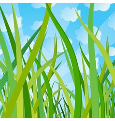 Ecological background with a grass vector