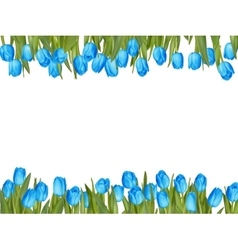 Isolated tulip frame arrangement eps 10 vector