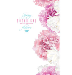 peony tulip banner vector image