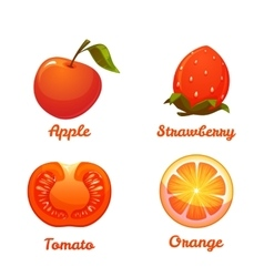 Set of food apple strawberry orange and tomato vector