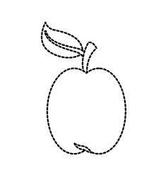 apple fresh fruit vitamin nutrition vector image