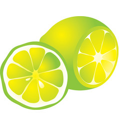 cut yellow lemon vector image vector image