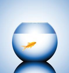 fish bowl vector image vector image