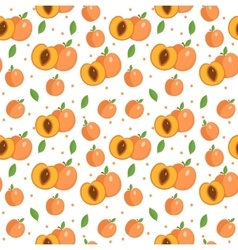 Peach seamless pattern Apricot endless background vector image