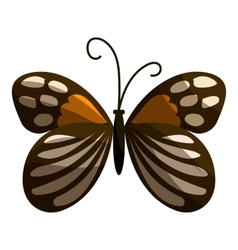 Spotted butterfly icon cartoon style vector