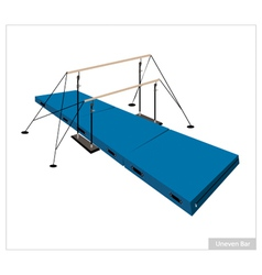 Professional Gymnastic Uneven Bars on White vector image