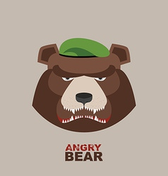 Bear soldier in a green beret Angry animal vector image