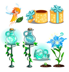 flower potion growing plants gift box and fairy vector image