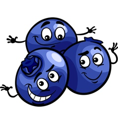 funny blueberry fruits cartoon vector image vector image