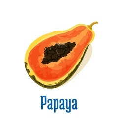 Papaya half cut icon with seeds fruit emblem vector