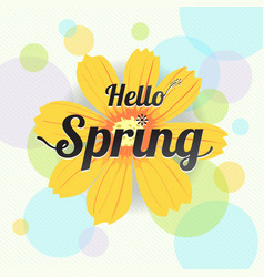 Floral spring with yellow flower and colorful vector