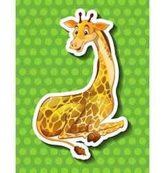 Long neck giraffe sitting vector